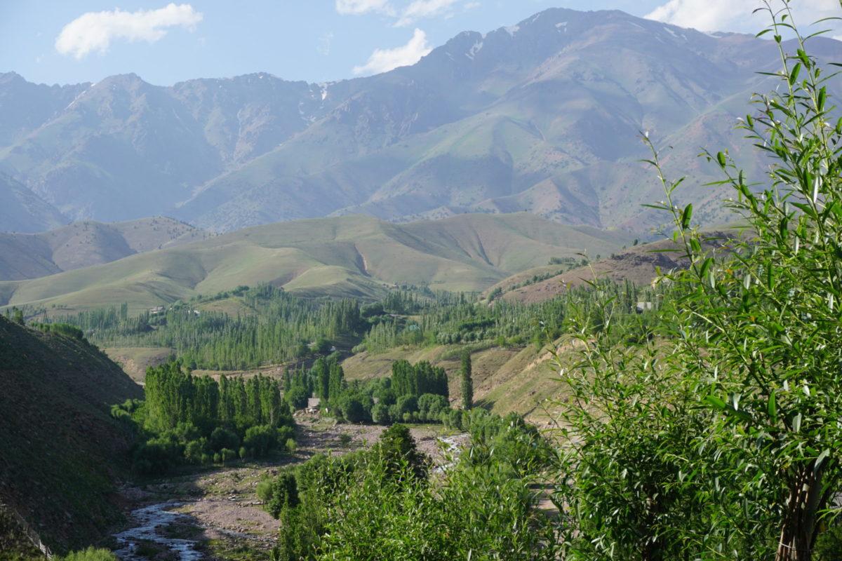Galya - Dolina Ertash Sai